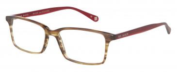 Ted Baker Glasses TB8118 in Amber Horn