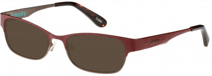 d2ab51ce39e Superdry SDO-ONWA Sunglasses in Painted Matte Burgundy Tortoiseshell
