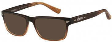 Superdry OCTANE sunglasses in Toffee