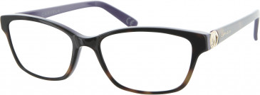 Carvela CAR003 glasses in Tortoiseshell