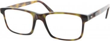 Oliver Goldsmith OLI010 glasses in Tortoiseshell