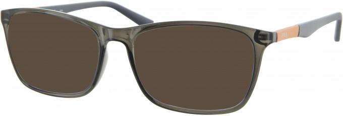 Fila VF9031 sunglasses in Brown