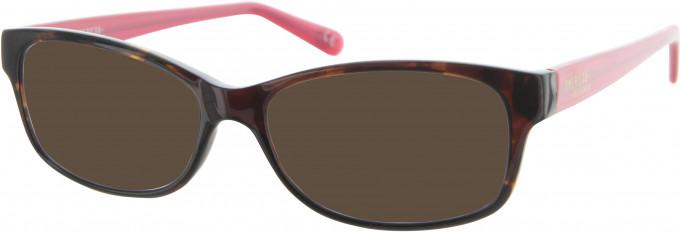 American Freshman AMFO004 sunglasses in Tortoiseshell