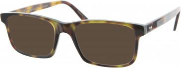Oliver Goldsmith OLI010 sunglasses in Tortoiseshell