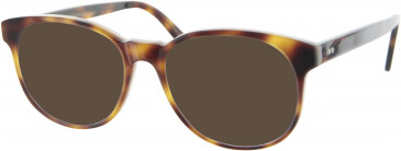 Oliver Goldsmith OLI013 sunglasses in Tortoiseshell
