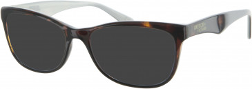 American Freshman AMFO005 sunglasses in Tortoiseshell