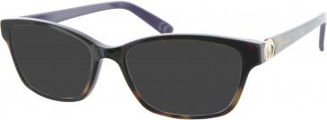 Carvela CAR003 sunglasses in Tortoiseshell