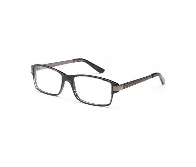 SFE glasses in Grey
