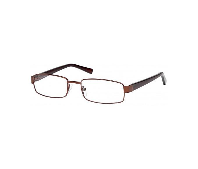 SFE glasses in Bronze