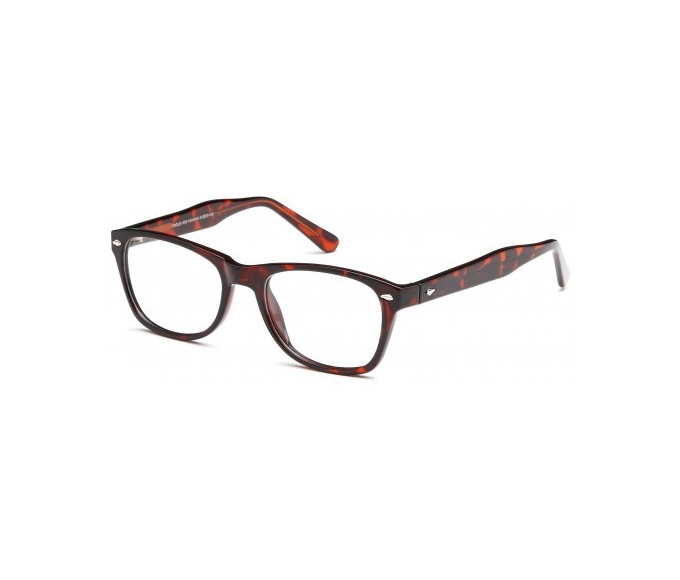 SFE glasses in Havana