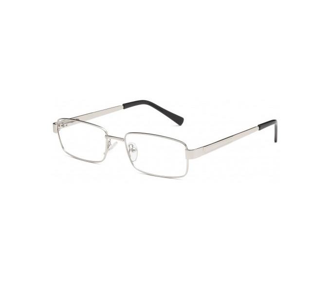 SFE glasses in Silver