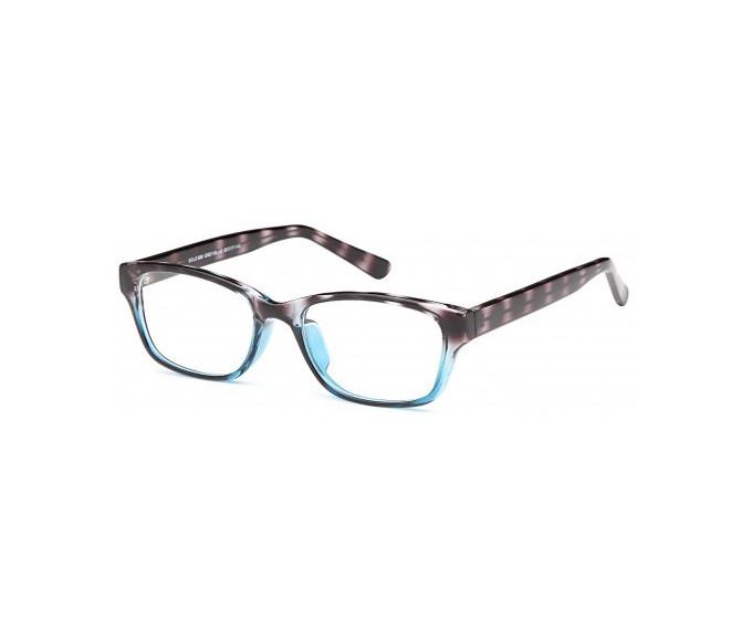 SFE glasses in Grey/Blue