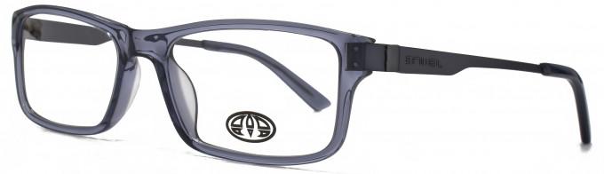 Animal SAMSON glasses in Crystal Grey