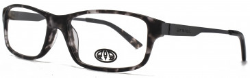 Animal STOKES glasses in Black Tortoiseshell