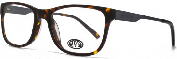 Animal JONES glasses in Tortoiseshell