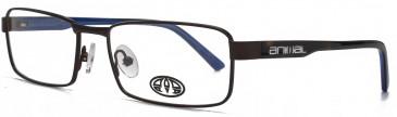 Animal BLAKE glasses in Matt Brown