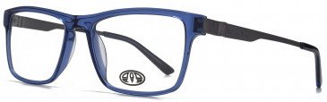 Animal DALE glasses in Crystal Blue