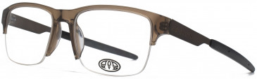 Animal CARPENTER glasses in Crystal Brown