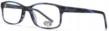 Animal TIMSON glasses in Blue Tortoiseshell