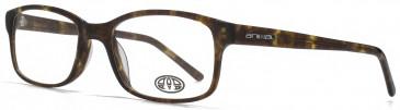Animal TIMSON glasses in Blue Tortoiseshell