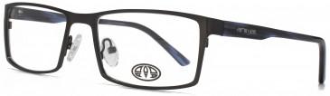 Animal EVANS glasses in Grey