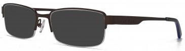 Animal PAYNE sunglasses in Matt Brown