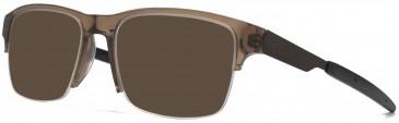 Animal CARPENTER sunglasses in Crystal Brown